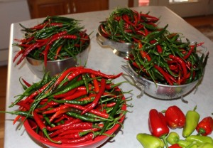 bowls of peppers