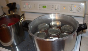 7 Jars of Chili Sauce in a Water Bath
